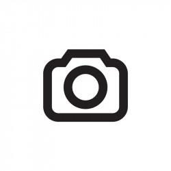 DSC00529_1.jpg